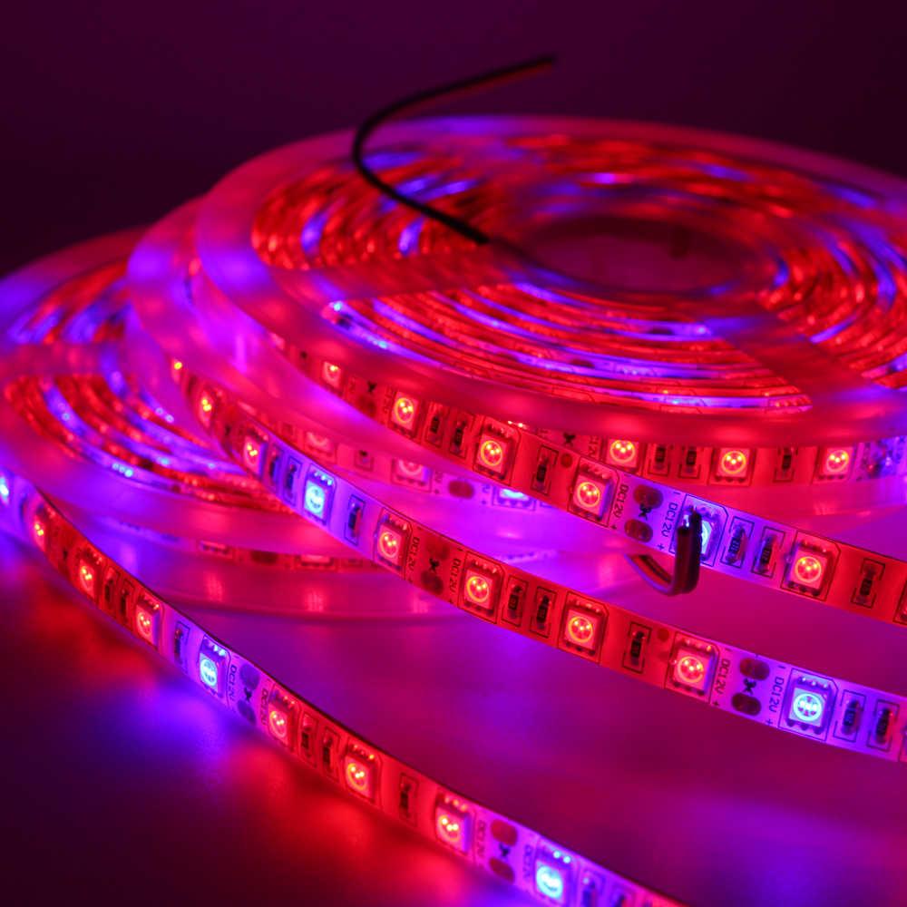 Pełnozakresowe LED roślin rosną taśmy światło 5050 liny lampa do akwarium hydroponicznych cieplarnianych spodnie ogrodowe kwiaty warzywa rosną światła