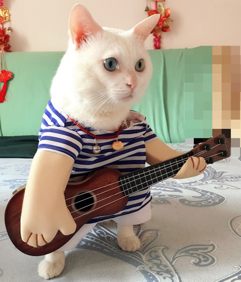 Funny Pet Guitar Costume For Cat