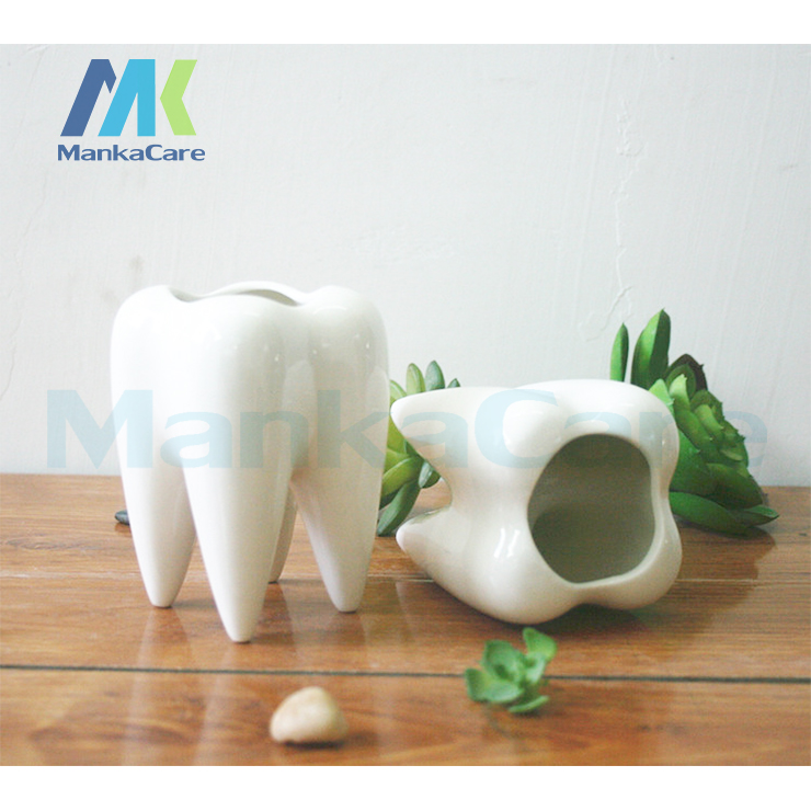 2 Pcs Tooth Shap Pastoral Style White Ceramic plant Pots Teeth model Flowerpot Flower Garden Pots Pencil Vase Dental gift water buffalo style ceramic silicone flowerpot plant pot white coffee