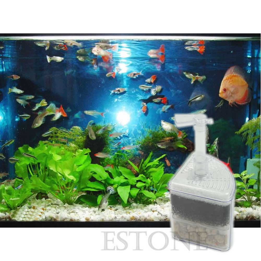 Fish for aquarium online - For Biochemical Air Driven Corner Sponge Filter Fry Shrimp Fish Aquarium Tank K400y