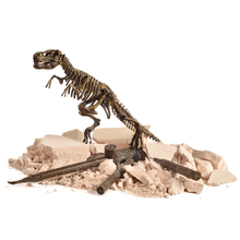 Dinosaur Science Kit Dig Up Dino Fossils and Assemble a T-Rex Skeleton, Mammoth,Triceratops