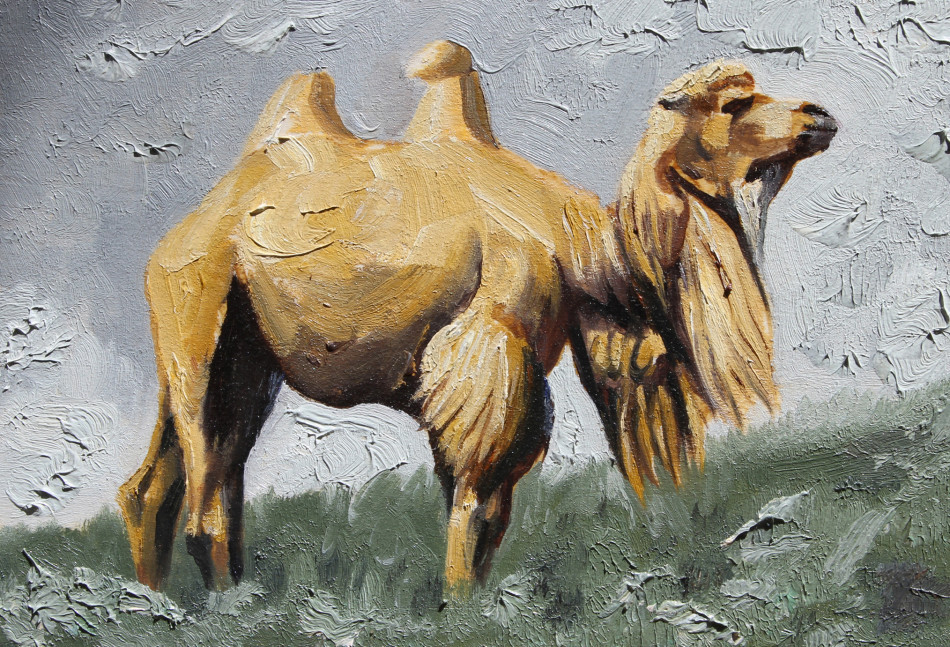 handmade oil painting on canvas industrious camel murals