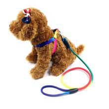 Яркий Радужный ошейник для собак Поводок Мягкий поводок прогулок