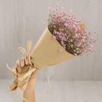 2015 Imported Natural Dried Flower Purple Pink Babysbreath Not Preserved Flower Wedding Gift Home Decoration Wholesale