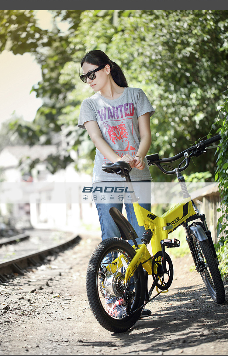 light bicycle li-ion variable-speed 22