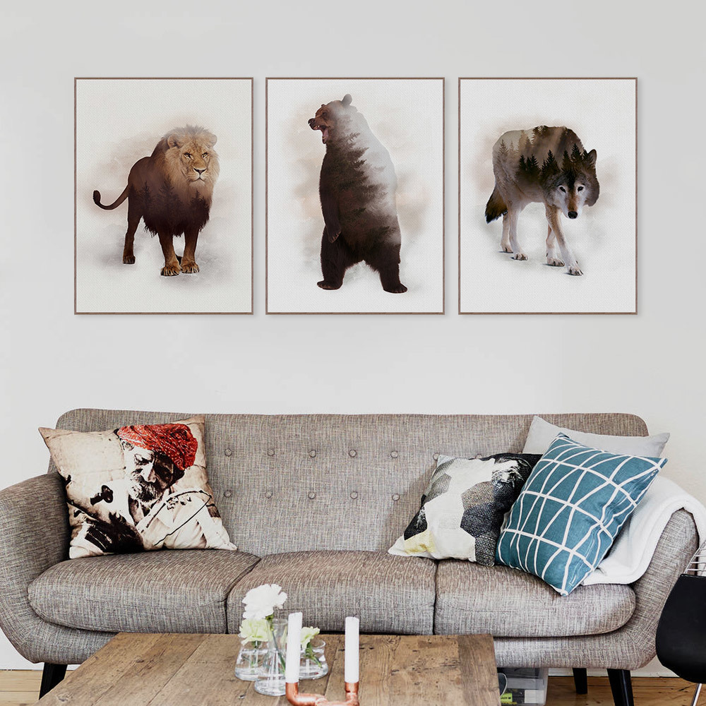 Lion, Home, Bear, Prints, Animals, Pictures