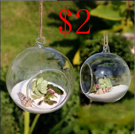 8pieces dia 8cm hanging round glass air plant terrariums bubble crystal balls flower globe vase. Black Bedroom Furniture Sets. Home Design Ideas