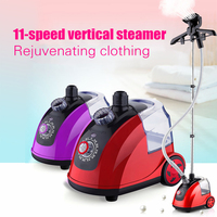 Household Appliances Hanging Machine Deep Penetration Of Steam Quick Wrinkle Stainless Steel Head Electric Iron