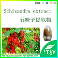 Manufacturer Supply Schizandra Fruit Extract  500g/lot