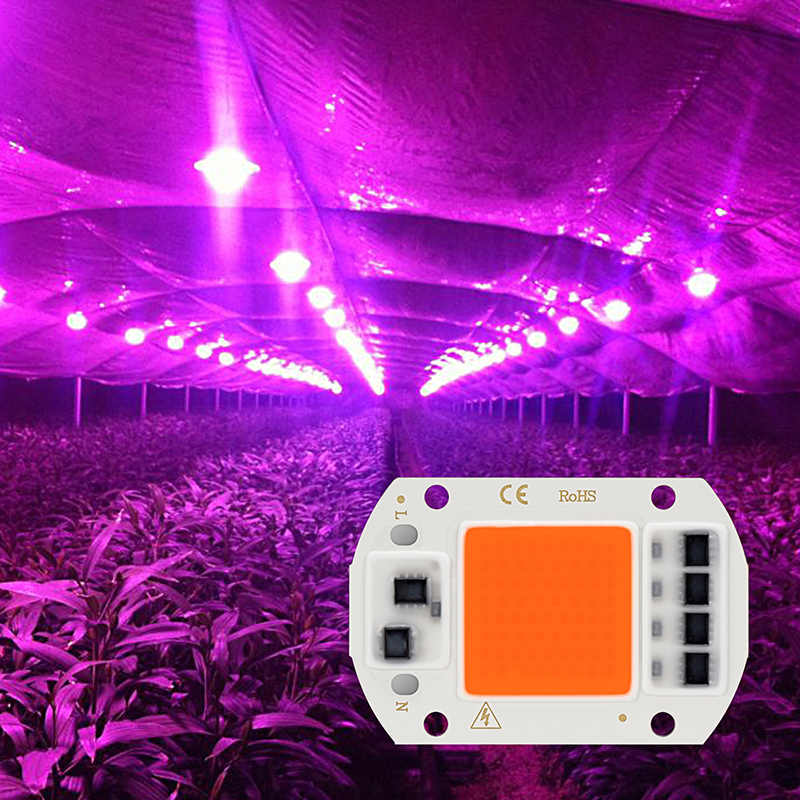 LED COB Chip Full Spectrum Grow Lamp 20W 30W 50W Phyto Growth Light AC 220V Fito lamp For Green house Plant Flower Seedling