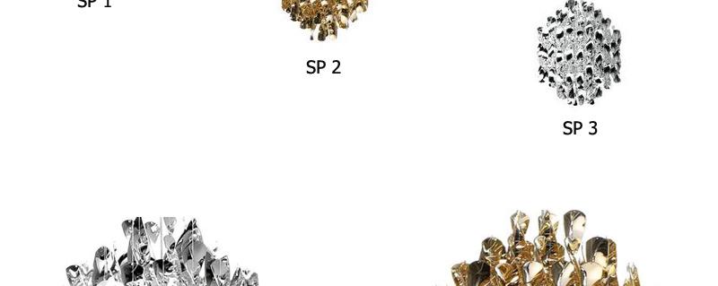 Sp_13