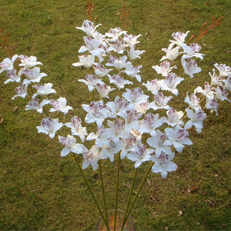 achetez en gros orchidée fleur thaïlande en ligne à