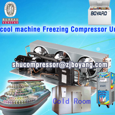 Air cooled chiller air condensing unit for ice cream display cooling cabinet supermarket fruit and vegetable display fridge