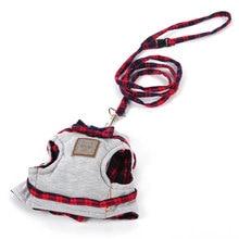 Super cute cat control harness / training