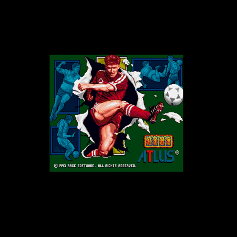 World Soccer 94 - Road to Glory NTSC Version 16 Bit 46 Pin Big Gray Game Card For USA Game Players image