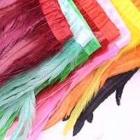 35 40cm coque feather trims DIY chicken tails Feather fringes 14 16inch rooster tails strips for cloth costume accessorys