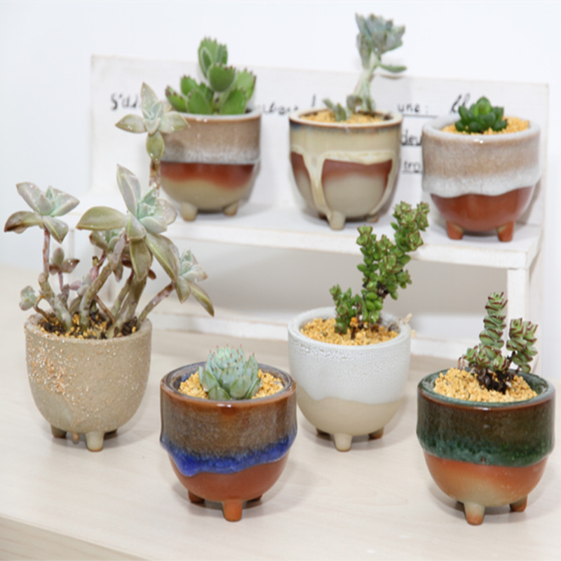 Meat flower pot ceramic handmade small desktop coarse pots