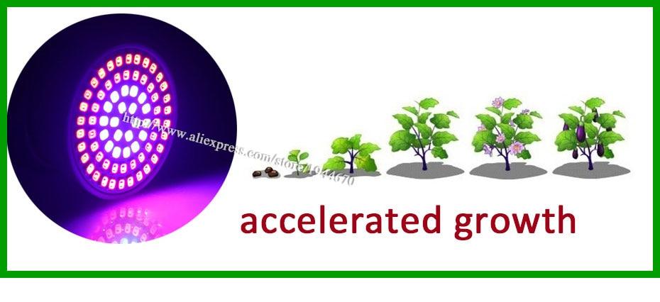 9.plant grow light lamp