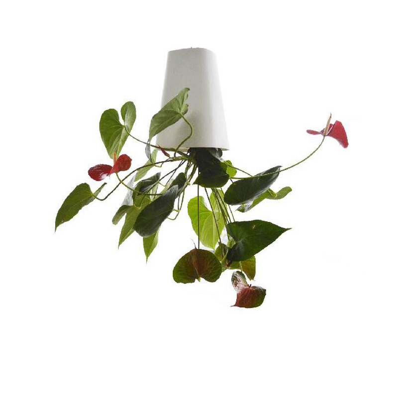 Sky Planter Hanging Indoor suspension Flower Pot Upside Down Plant with rope