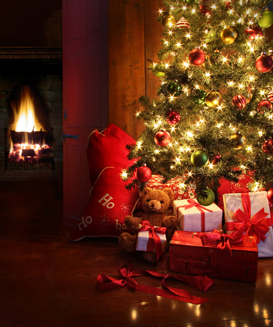 Thin fabric cloth  Printed photography background Christmas home decoration backdrop XT-2140