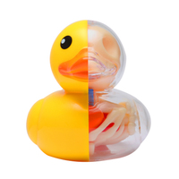 4dmaster-artist-series-dahuang-duck-skeleton-model-educational-anatomy-skull-assembled-half-profile-figure-toys