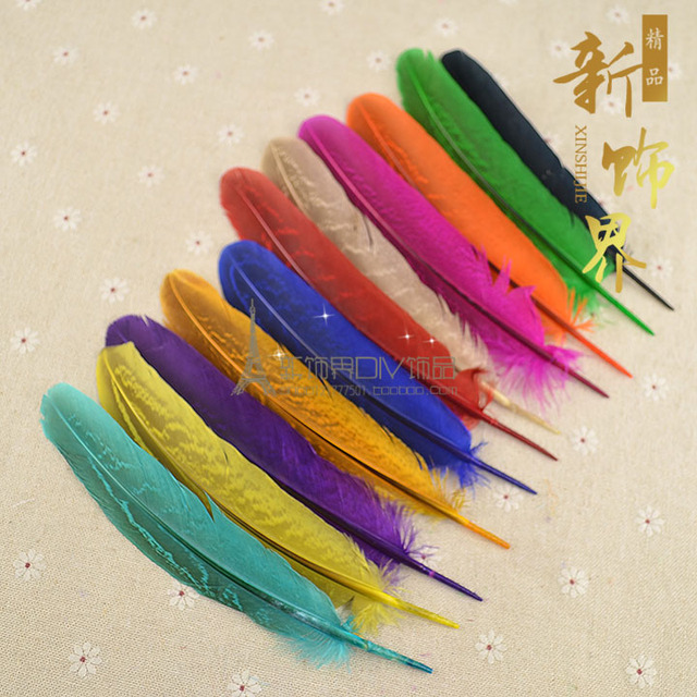 DIY Bulk Pheasant Striped Feathers Headwear Dress Up Stage Costume Feather Accessories 13-15cm