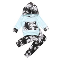 Adorable Newborn Toddler Baby Girl Floral Set Hoodie Tops Floral Pant 2Pcs Pudcoco Autumn Clothes Outfits