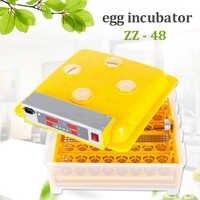 48 oeuf couveuse numérique automatique incubateur couveuse poulet volaille oeuf incubateur humidité température contrôle machine à couver
