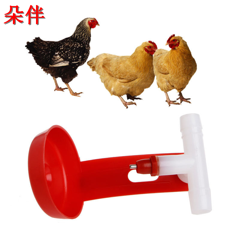 Farm Animals Automatic Bird Coop Feed Poultry Chicken Fowl Drinker Water Drinking Cups Hanging Chicken For Beauty Tool New ...