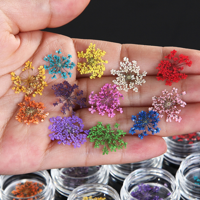 Nail Art Decoration 12 Colors Real Nail Dried Flowers DIY Tips with Case Small Flowers Manicure Nail Styling Tools