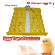 цена на 220V/110V Motor Turn The Eggs Tray Automatic Incubator Egg Turning Motor For big sale
