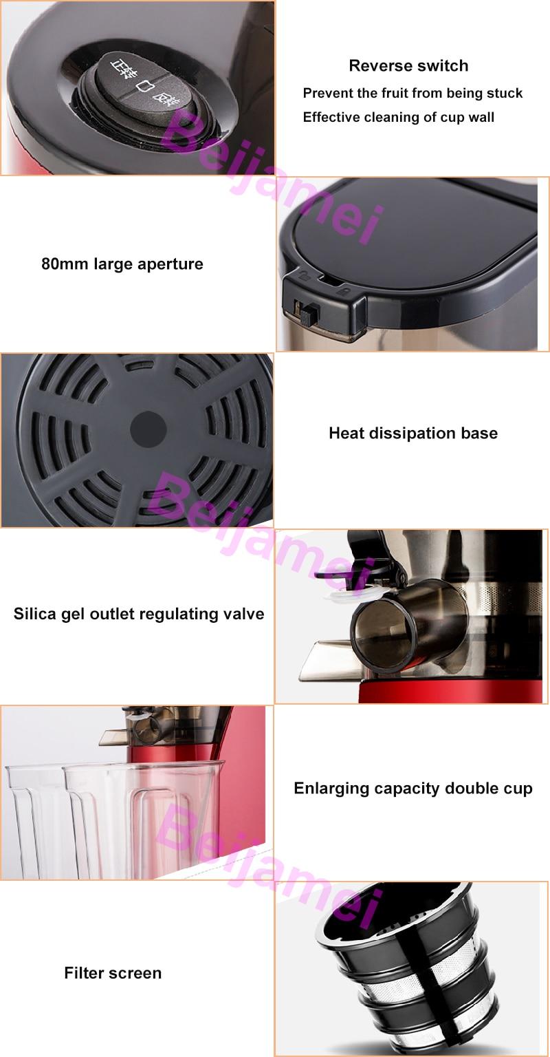 fruit juicer details