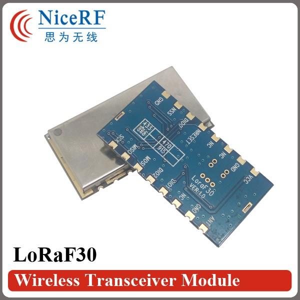 LoRaF30-3