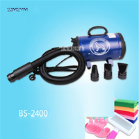 BS 2400 Pet Blowing Machine Mute High Power Hair Dryer Professional Big Dogs and Cats Blow Drier Dedicated Non crane Style