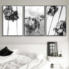 Black and White Posters and Prints Flower Canvas Painting Camel Animal Wall Art Picture for Living Room Decoration Home Decor(China)
