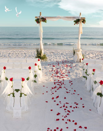 10x10ft Sea Sand Beach Wedding Ceremony Red Flower Drape