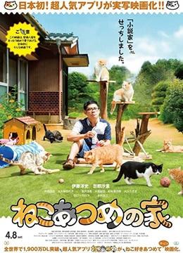 《猫咪后院之家》2017年日本剧情电影在线观看