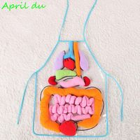 1pcs Baby toy human internal organs early childhoodteaching equipment children's educational three dimensional organ apron