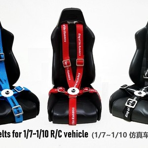 Simulated Driver Seat Belt For