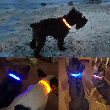 LED USB Rechargeable Adjustable Safety Dog Collares 1