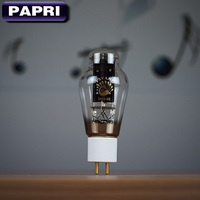 PAPRI PSVANE emparejado 1 par HIFI 300B/SE tubo de vacío tubo de potencia Original de fábrica prueba y fósforo