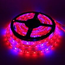مصابيح فيتو LED بطول 5 متر شريط إضاءة LED كامل الطيف 300 مصباح LED 5050 رقاقة LED Fitolampy تنمو الاضواء للبيوت الزجاجية النباتات المائية