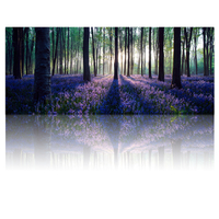 FREE SHIPPING Large Size Canvas Wall Art With Frame Lavender Forest Mild Sunshine Landscape Canvas Prints