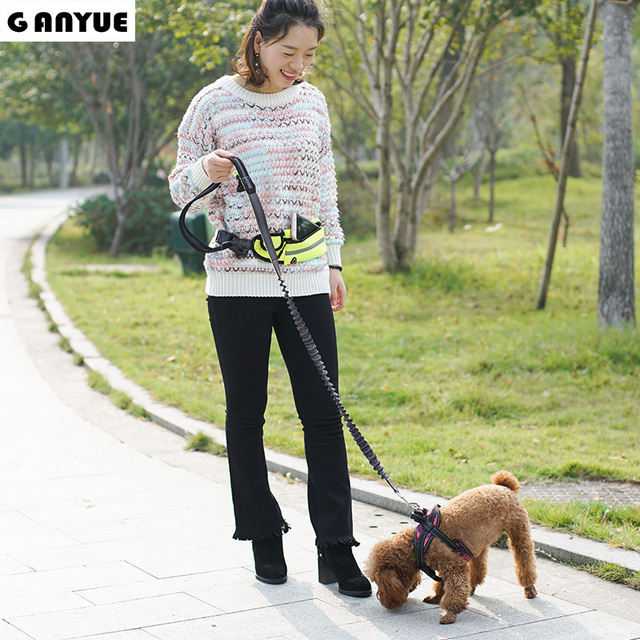 Hands Free Leash Attaches to Reflective Adjustable Waist Pouch For Running Jogging Hiking and Walking