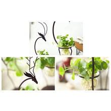 Hydroponic Plant Transparent Glass Vase with Iron Deer Design Stand Holder