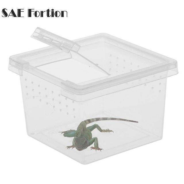 Mini Portable Plastic Transparent Terrarium For Reptile Lizards