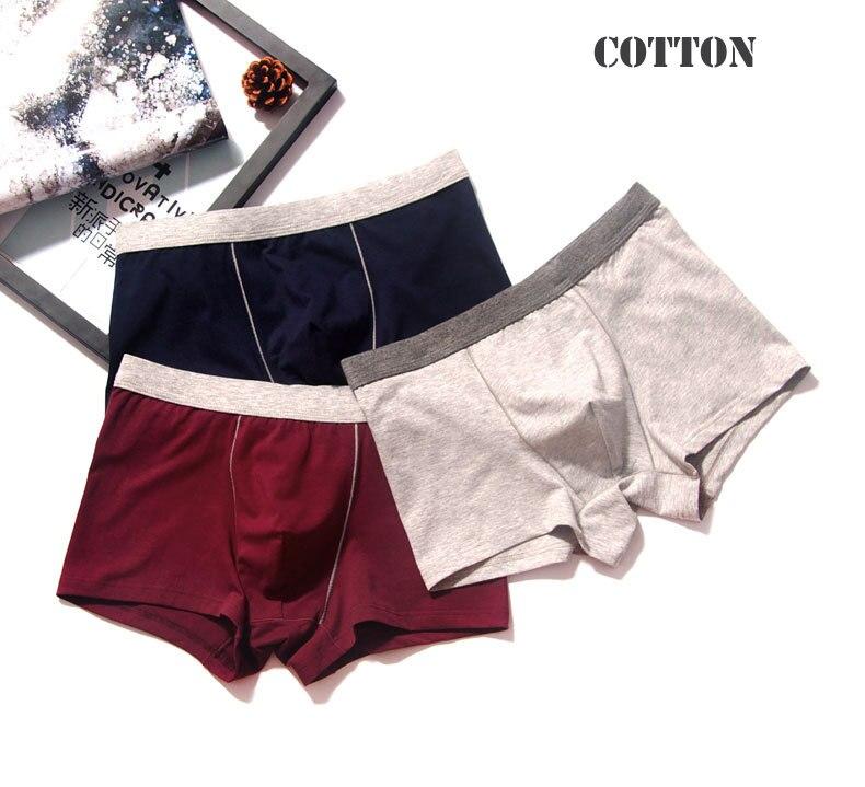 2pcslot Men Underwear Cotton Panties 4XL Cueca Hombre Calvn Boxer Underwear Men Brand Underpants Boxer Shorts 365 Mens Trunks02
