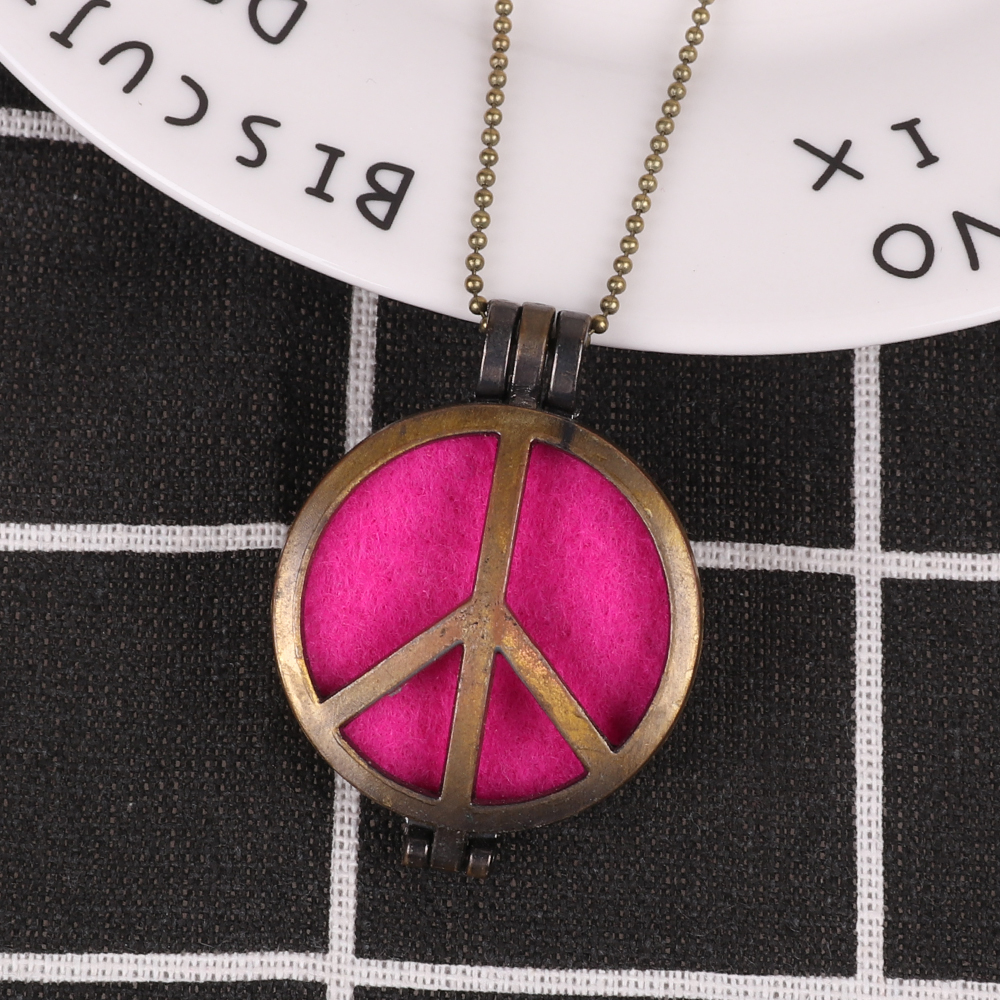 Personalized Aromatherapy Necklace Essential Oil Diffuser Necklace for Gift with Free Felt Pads and Chain Women Jewelry