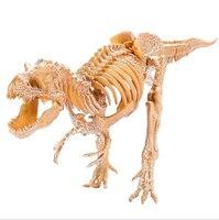 50cm Large dinosaur fossil archaeological excavation toy Trolly archaeological dinosaur Triceratops skeleton Dig dinosaur toys