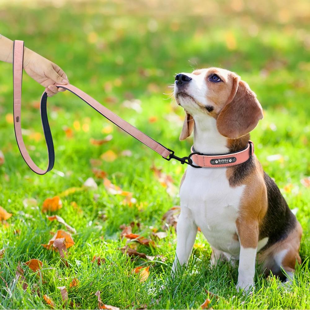 Custom Dog Collars and Leash (with hand) - pugandhoney.com